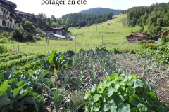 jardins potagers en été
