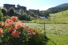 montchavin fleuri en été
